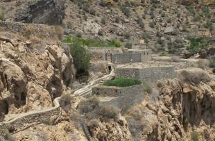 Oman_JebelAkhdar_GardenPlantations17